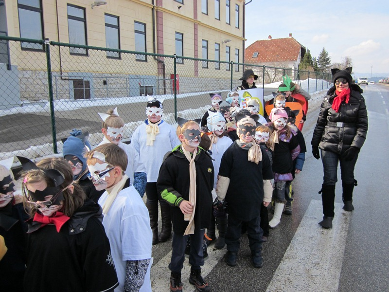 Pustni karneval v Mokronogu